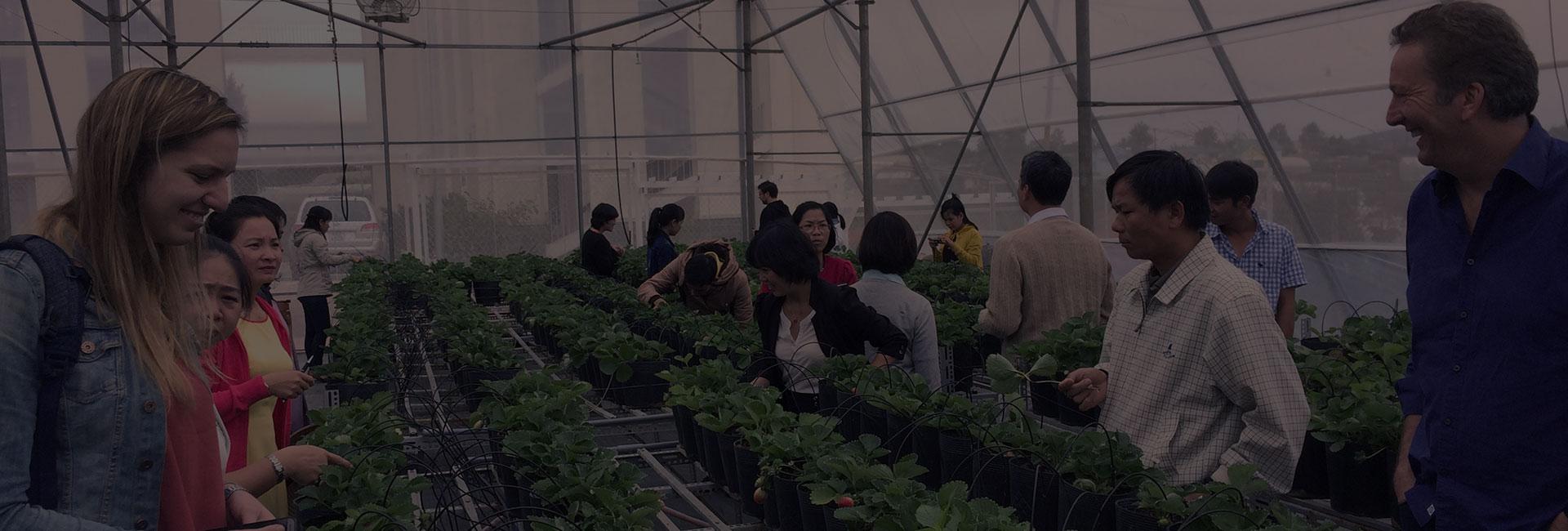 Chương trình đào tạo chuyên gia ở Đà Lạt sẽ huấn luyện cho các học viên về kiến thức thực hành và kỹ năng đào tạo